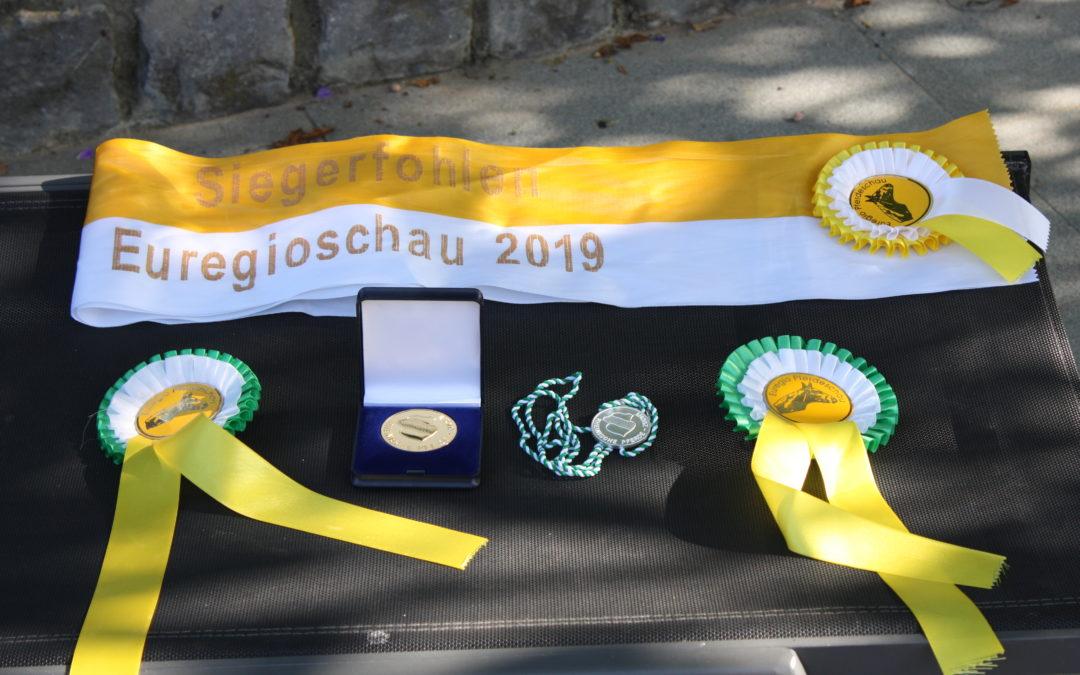 Succès au Fohlenschau Aachen